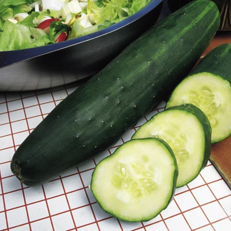 Cucumber Marketmore Seeds
